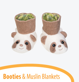 apple-park/muslin-blankets-booties